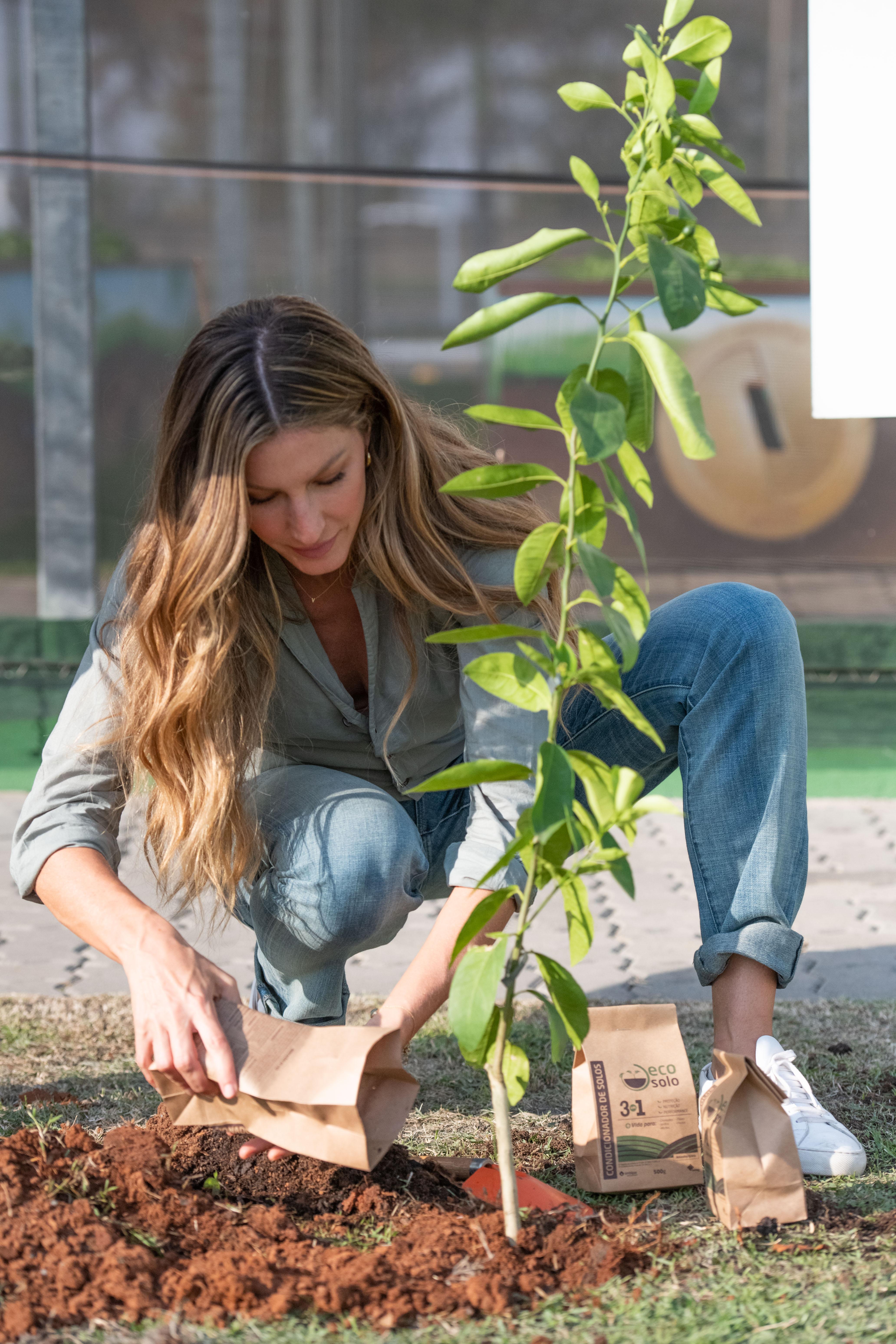 Gisele plantando arvore frutifera na matriz do grupo ambipar em nova odessa durante sua vista nesta semana