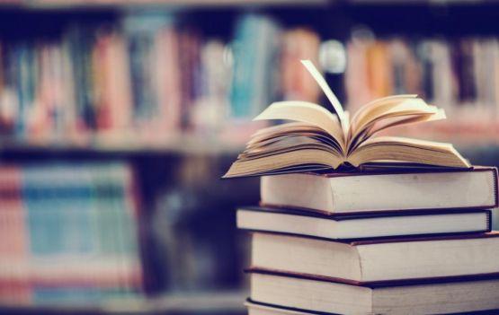Dia Nacional do Livro: 9 autores para ler ainda em 2020