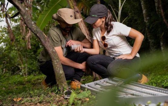 Core Case  lança  coleção de roupas DNA ecológico.